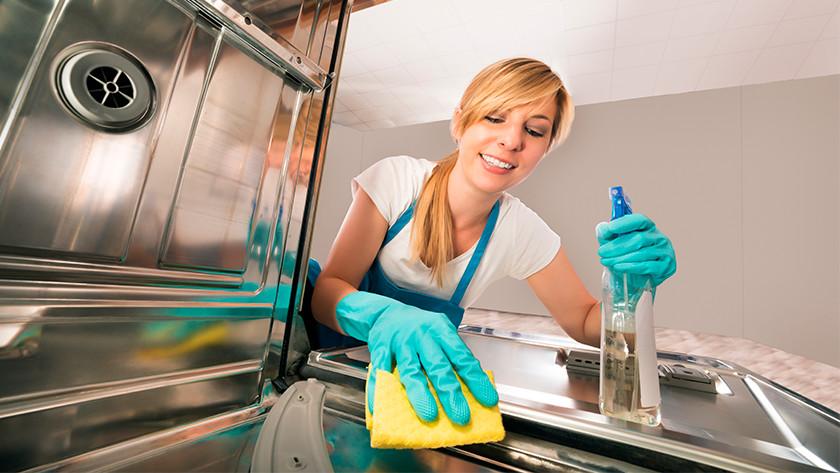 Reinigung einer Spülmaschine