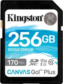 Kingston Canvas Go Plus, 256 GB