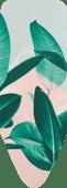 Brabantia-Bezug C 124 x 45 cm Tropical Leaves