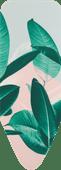 Brabantia-Bezug C 124 x 45 cm Tropical Leaves 4 mm Schaum