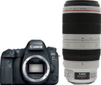 Canon EOS 6D Mark II + EF 100-400 mm f/4.5-5.6L IS II USM
